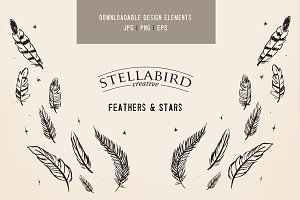 Feathers and Stars Vector Set