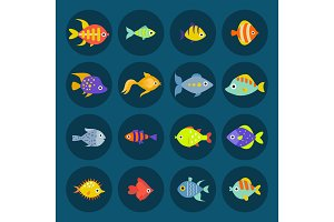 Aquarium ocean fish underwater bowl tropical aquatic animals water nature pet characters vector illustration