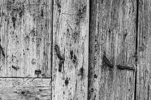 Anciient Wood Background Black White