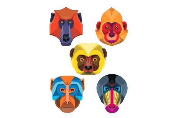 Old World Monkeys Flat Icon Collect