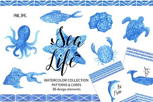 Sea Life.Watercolor collection.
