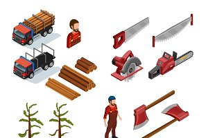 Lumberjack isometric color icons
