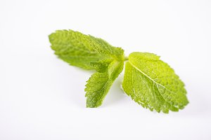 Close-up of mint on white background. Isolated.