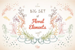 Big set of Floral Elements