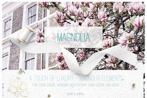 Magnolia ~ Hand drawn elements