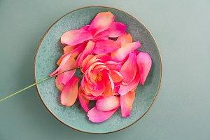 Crepe paper peony flowers