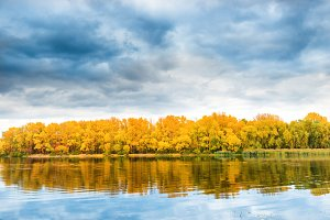 Autumn forest on river bank