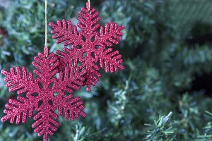 Christmas decoration-two snowflakes
