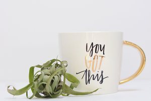 You Got This Mug with Airplant