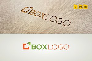 Professional Box Logo Template