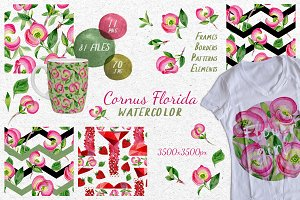 Cornus Florida flowers PNG set
