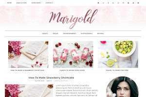 Wordpress Theme Marigold