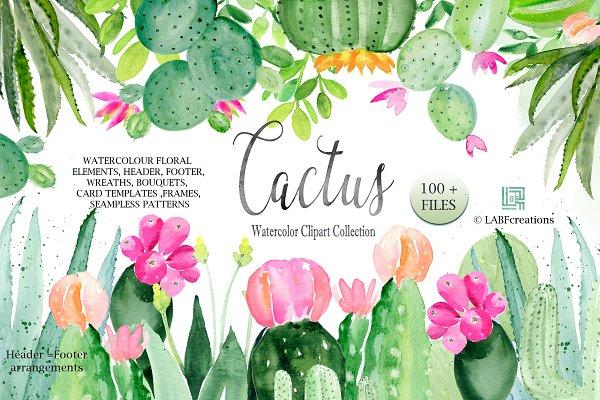 Cactus & Aloe Watercolor Clipart
