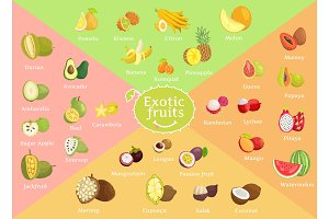Exotic Fruits Collection Color Vector Illustration