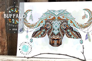 Ethnic Collection: Buffalo