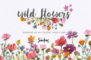 Wild flowers watercolor clip art
