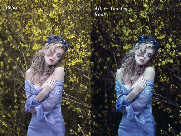 Twisted Roots Photoshop Action