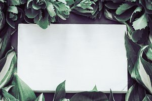 foliage background place for text