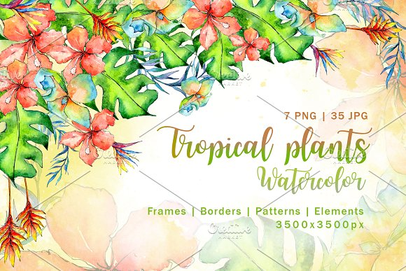 Tropical Plant PNG Watercolor Set
