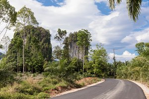 Tropical nature with palms and karst rocks Thailand