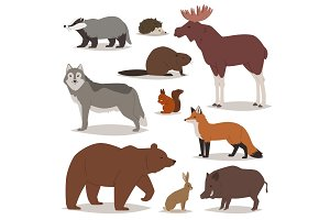 Forest animals vector cartoon animalistic characters bear fox and wild wolf or boar in woodland illustration set of elk hedgehog and squirrel isolated on white background