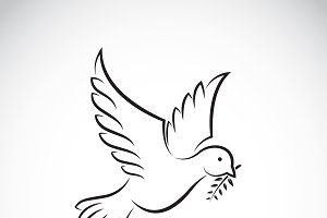 Black dove peace with olive branch.