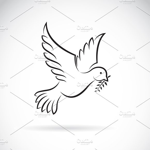 Black Dove Peace With Olive Branch