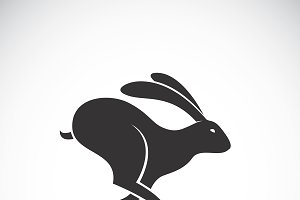 Vector of black rabbit is running.