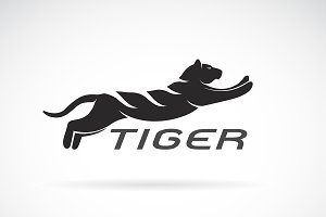 Vector of black tiger design. Animal