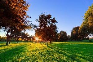 Late summer, autumn park at sunset
