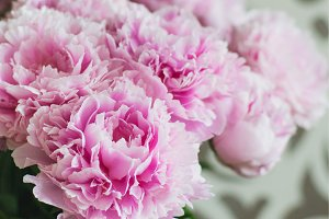 Elegant bouquet of a lot of peonies of pink color close up. Beautiful flower for any holiday. Lots of pretty and romantic flowers in floral shop.