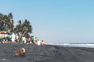 Old dry coconut on the black sand beach. Balinese ceremony on the background.