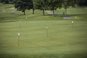 pennants in golf holes