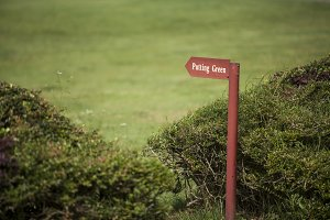 signpost of patter green
