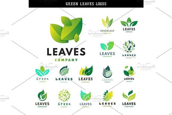 Green Leaf Eco Design Friendly Nature Elegance Symbol And Natural Element Ecology Organic Vector Illustration