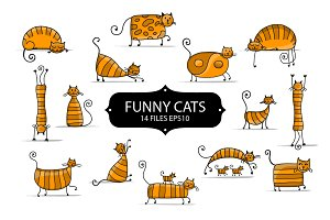 Funny striped cats collection