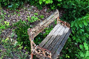 Barnacle-covered bench