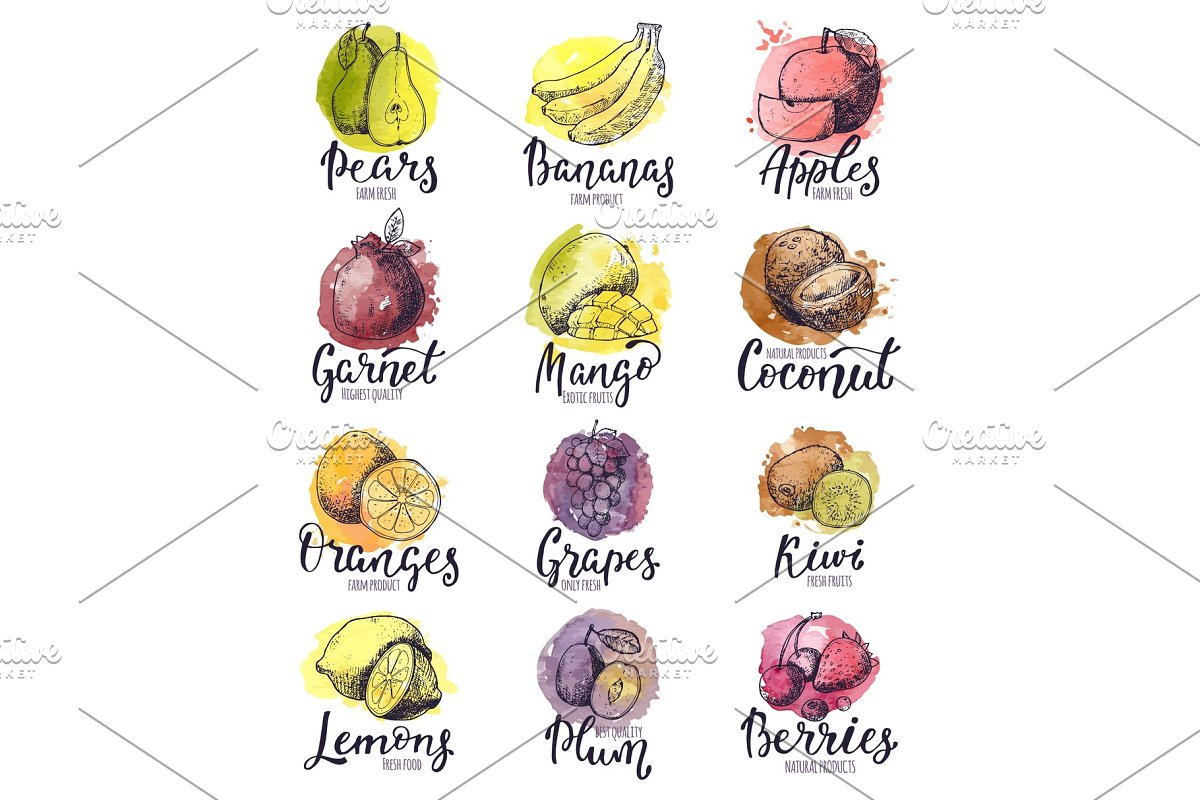 Fruits Vector Fruity Apple Banana And Exotic Mango With Fresh Slices And Watercolor Logo Of Tropical Fruit With Lettering Sign Illustration Fruitful