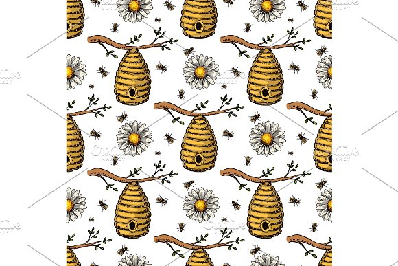 Apiary Bee Vector Chamomile Hand Drawn Vintage Honey Making Farmer Beekeeper Illustration Nature Product Seamless Pattern Background