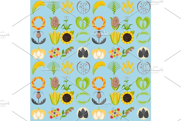 Cereal Seeds Grain Product Vector Natural Plant Muesli Grainy Organic Porridge Flour Seamless Pattern Background Illustration