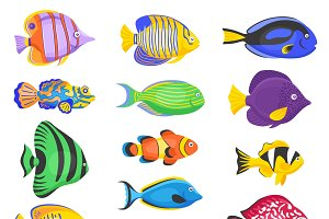 Exotic tropical fish set