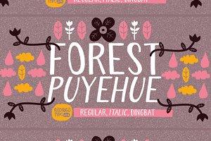 Forest Puyehue -63%