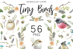 Watercolor birds clipart.