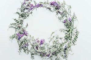 Wild flowers round frame