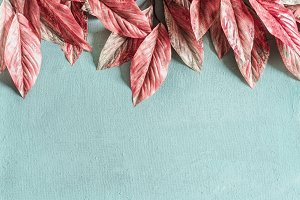 Pink leaves border on pastel blue