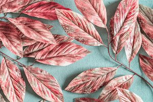 Pink autumn leaves background