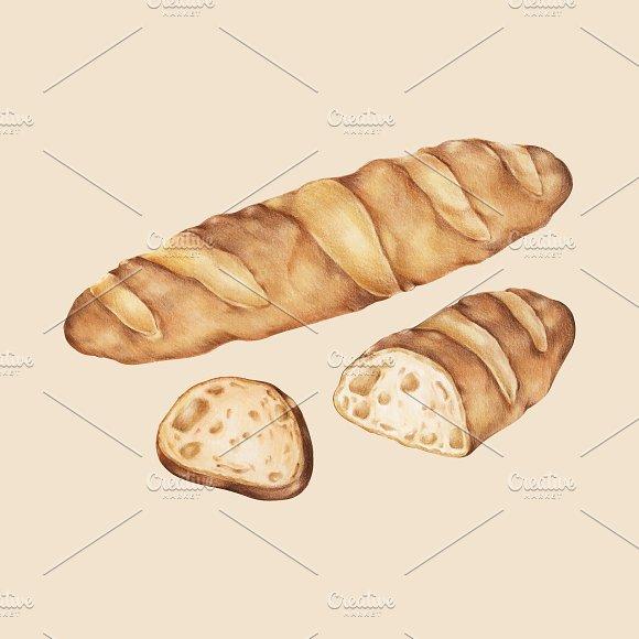 Illustration Of Baked Baguette
