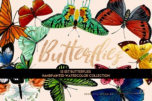 12 set Butterflies & Pattern.