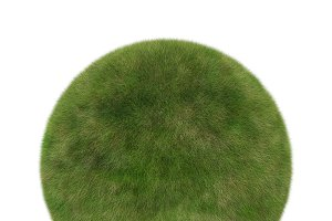 Green grass ball in sphere shape isolated on white background, 3d illustration
