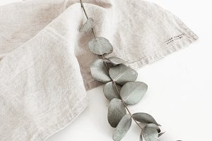 Stock Photo Eucalyptus Table Cloth